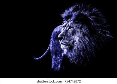 Blue Lion Images Stock Photos Vectors Shutterstock