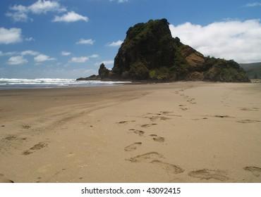 Lion rock, South Piha beach, western shore of Auckland, New Zealand