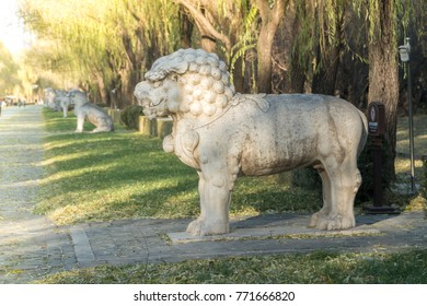 A Lion Standing Guard on the Sacred Way to the Ming Tombs, Beijing China