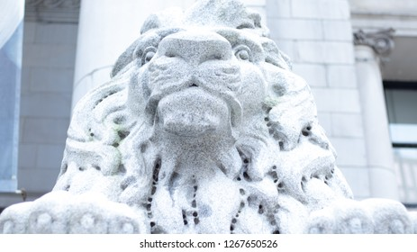 Lion Statue Bust at the Vancouver Library in Canada