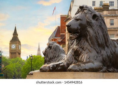 Lion Statue at Trafalgar Square - a public space and tourist attraction in central London with Big Ben on the background