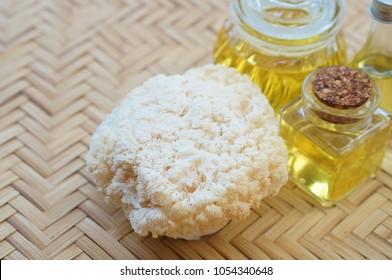 Lion's Mane Mushroom oil