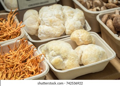 Lion's mane mushroom in a recyclable tray