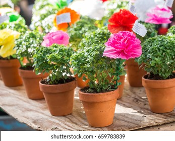 LISBON, PORTUGAL - JUNE 13, 2017: Basil plants with paper flowers and poems, traditional gifts given by men to women they love on Saint Anthony.