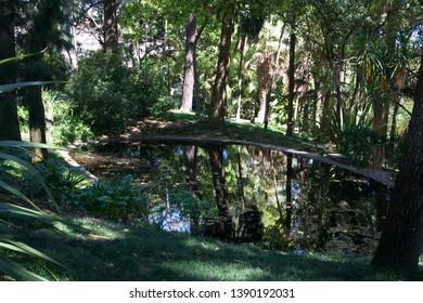 Lisbon / Portugal - March 20 2019: Pond amongst green trees in Botanical Gardens, Lisbon, Portugal