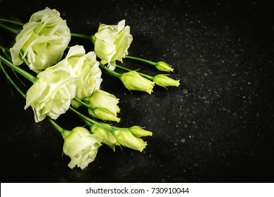 Lisianthus, Eustoma. White flowers on dark texture background. Funeral and cemetery flowers concept.