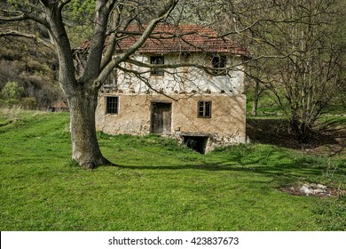 Lisine, Serbia- April,03 2016: Old abandoned water mill with walnut tree