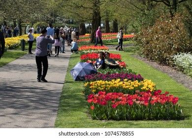 Lisse, Netherlands - April 19, 2018:  Tourists from different countries around the world visit keukenhof gardens
