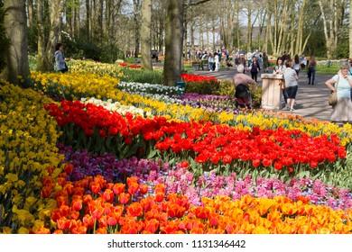 Lisse, Netherlands - April 19, 2018:  Tourists visit Keukenhof flower park to enjoy the beautiful flower gardens