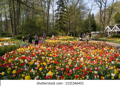 Lisse, Netherlands - April 19, 2018: Tourists visit keukenhof flower park to enjoy the beautiful flower gardens on a sunny day in spring