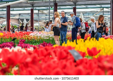 Lisse, Netherlands - April 20, 2018: Keukenhof Garden in Holland