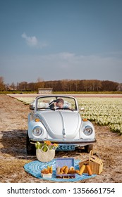 Lisse Netherlands April 2019, A classic, white Volkswagen Beetle car on a flower covered meadow in the bulb region.  Couple having a picnic by a blooming Narcissen and Hyacint field during Spring