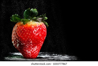 Lit from several angles to show the macro details of this strawberry. Strawberry is also dusted with icing sugar to create a tasty fruit.