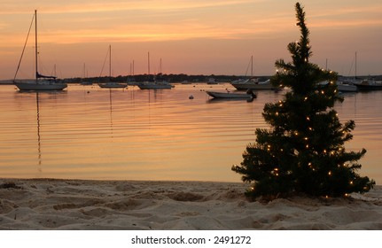 Lit tree with boats in the background