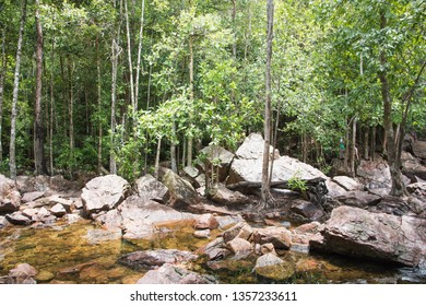 Litchfield, Northern Territory, Australia-December 24,2017: People trekking through the rock and bushland by Florence Falls in Litchfield National Park in the Northern Territory of Australia