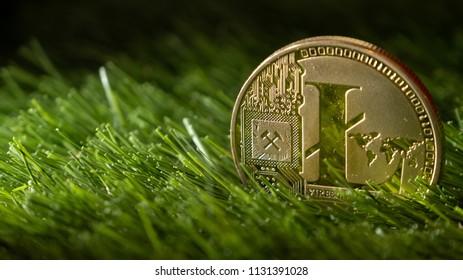 Litecoin on green grass.