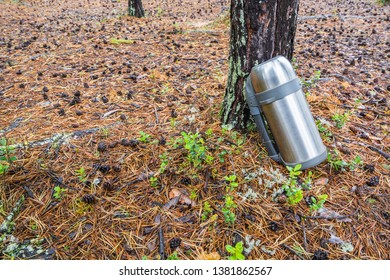 Liter marching thermos with handle for hot tea or coffee stands in forest on needle like ground next tree