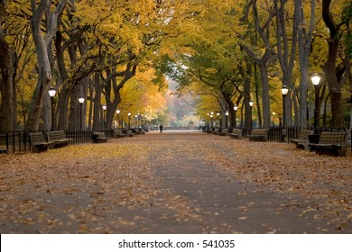 Literary Walk in Central Park during autumn