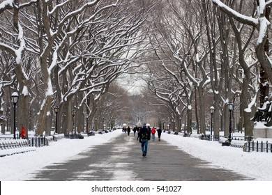 Literary Walk in Central Park in winter