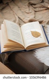 literature, reading and poetry concept - book with autumn leaf on page on sofa at home
