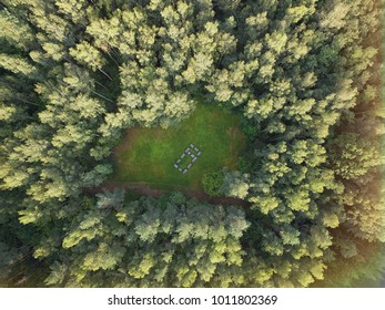 Lithuanian parks aerial view - Forest park drone birds eye view