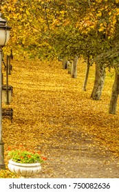 The Lithuanian resort of Birstonas during autumn, when the leaves are drying