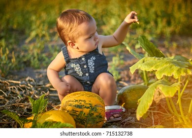 litle baby girl with pumpkins on sunset