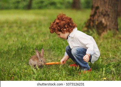 litle boy plays with rabbit in park