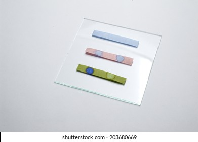 Litmus ph test paperisolated