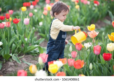 Littel baby boy is watering flowers in spring or summer from the yellow water can.