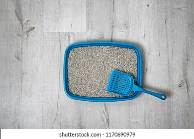 Litter tray and scoop for cat on floor, top view. Pet care