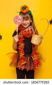 Littile girl in witch costume having fun at Halloween trick or treat while collecting candies, holding big lollipop and wicker basket full of candies