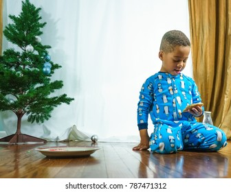 Little african american and caucasian toddler boy staring down at a sugar cookie while sitting on the wood floor next to a mini pine tree.
