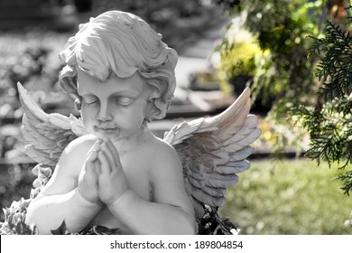 little Angel on a cemetery / Cemetery