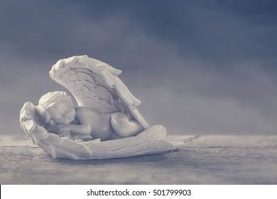 Little angel sleeping in the wings