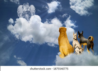 Little Angel in white clouds with light ray from  heaven and group of dogs on below,religion,