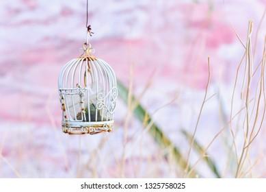 Little Antique Birdcage Isolated in Garden