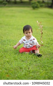 little asian baby playing on the green grass