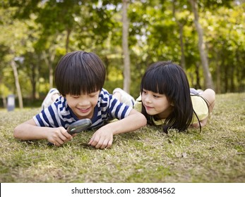 little asian boy and girl using magnifier to study grass and leaves in a park.