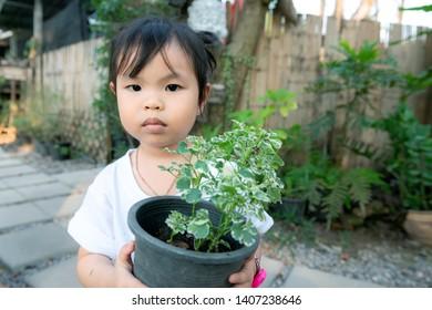 Little asian Girl with flowerpot. Little lovely girl is standing and holding flowerpot.