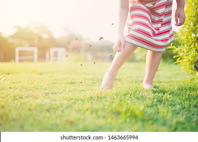 Little Asian girl has allergies with mosquitoes bite and itching her leg.She play in the playground and Mosquito bite her.Mosquito sucking blood on child skin.