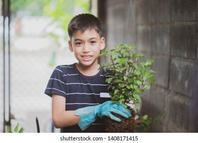 Little Asian mix race boy planting Vegetable gardening at home