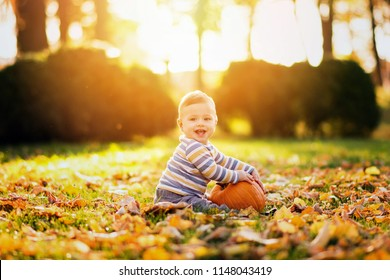 Little baby boy with pumpkin in park on sunny autumn day. Natural lighting, back light, vibrant colors.