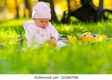 Little baby girl playing with autumn leaves in a park as she sits on a rug in lush green grass in a low angle view