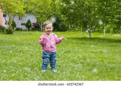 Little baby girl  playing with poplar fluff on the green park outdoor.