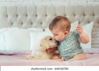 Little baby girl sit on the bed with labrador puppy
