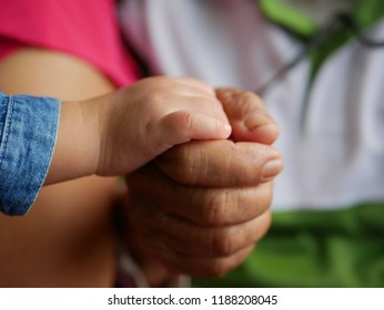 Little baby hand in her grandmother's hand representing grandparent-grandchild bond and relationship