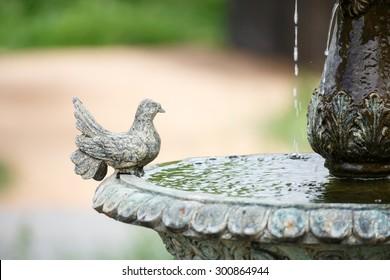 little bird on fountain