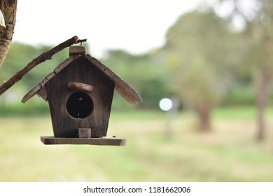 Little bird wooden house on blurred outdoor landscape with space for add text.