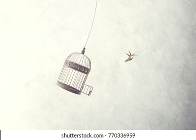 little birds escape out of birdcage, freedom concept